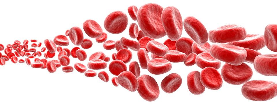 Analiza krwi