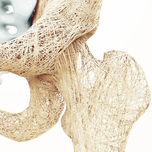 Analiza wpływu wybranych pierwiastków na funkcjonowanie tkanki kostnej
